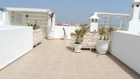 Tres bel appartement terrasse