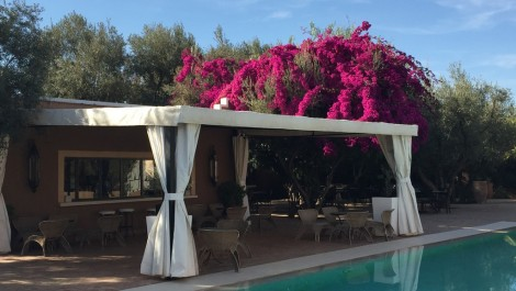 Charming guest house route de l'Ourika