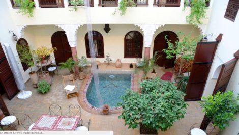 Riad – Maison d'hôtes, un des plus grand patio de la médina, très lumineux, 7 chambres dont un appartement en terrasse