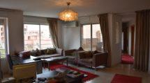 Magnifique appartement spacieux et lumineux