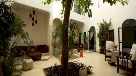 Magnifique et élégant Riad, très lumineux, bassin, hammam