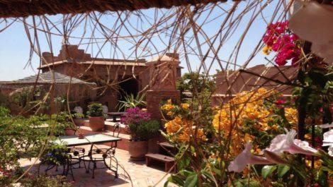 Maison d'hôtes de 11 chambres à 5 minutes de Jemaa El Fna, accès voiture proche