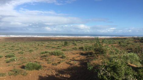 Essaouira – Land facing the ocean, 9600 m²