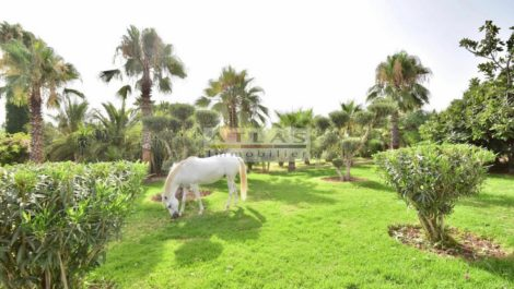 Large two-hectare project 13 kilometers from Marrakech (horse farm)